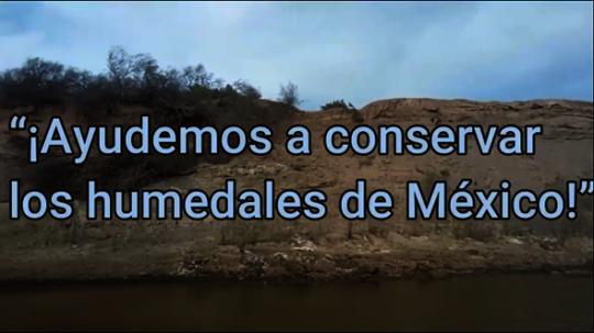 Screenshot from World Wetlands Day video.