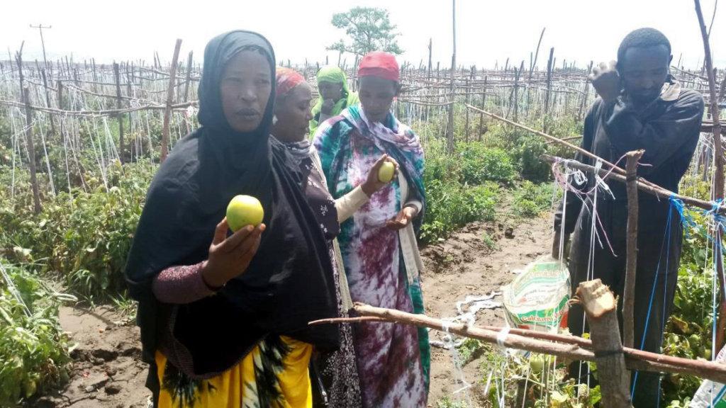 Soyama Ladies Assoc. visiting Meki Commercial Farm