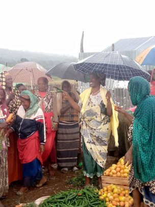 Pepper harvest in the rain