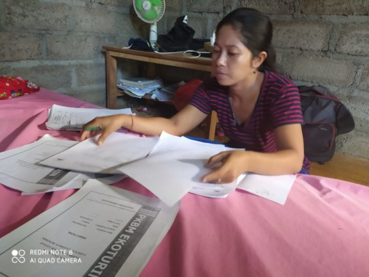 Teacher preparing lessons materials from home
