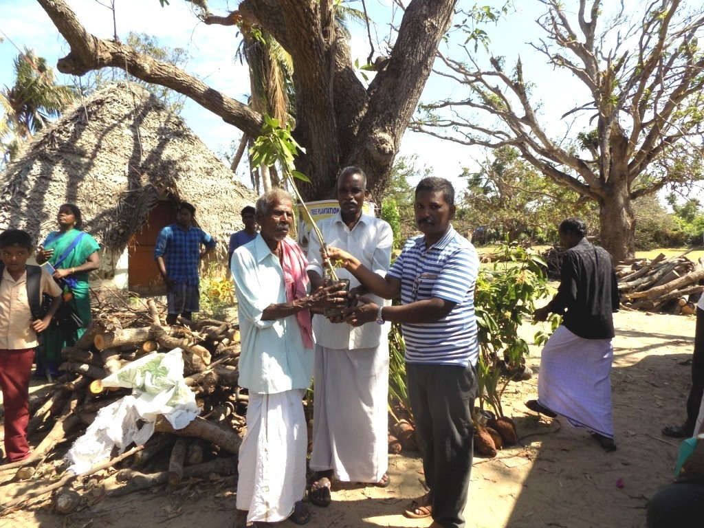 Planting Seedlings for Gaja Cyclone Victims