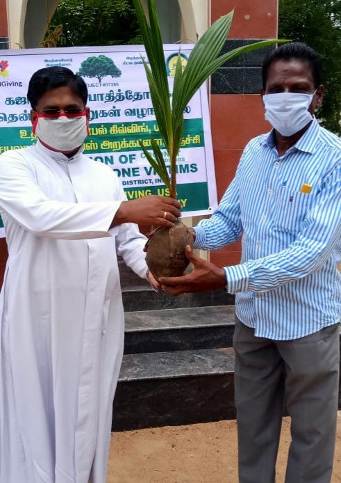 Plant trees for Gaja Cyclone recovery