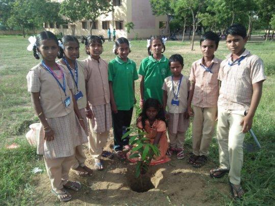 planting trees in Siruganur school