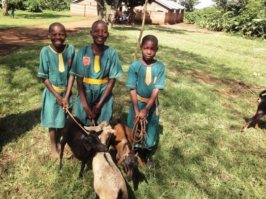 Vocational Training for Displaced Ugandan Children