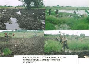 Land prepared for planting rice
