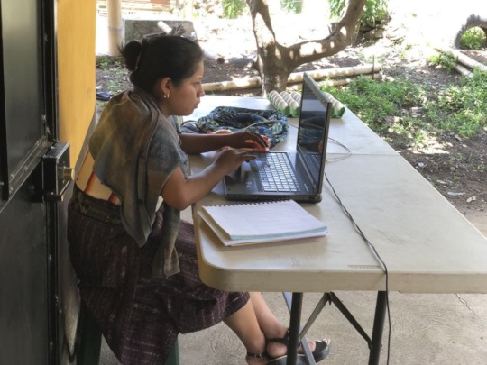 A university student completing online assignment