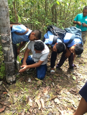 Students learning to set up a camera trap