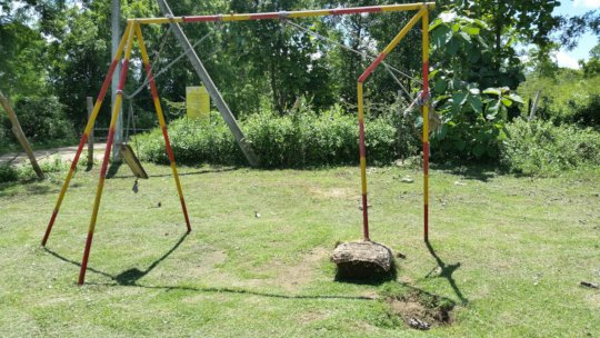 An elephant removed the base of this swing.