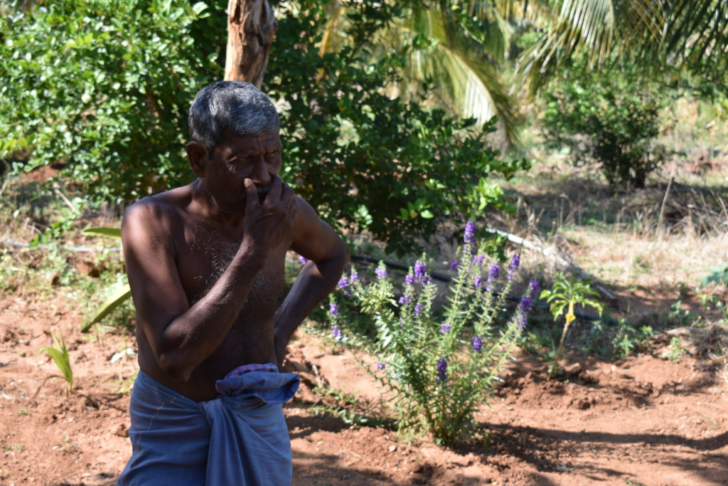 Farmers like Jayasena can lose their whole harvest