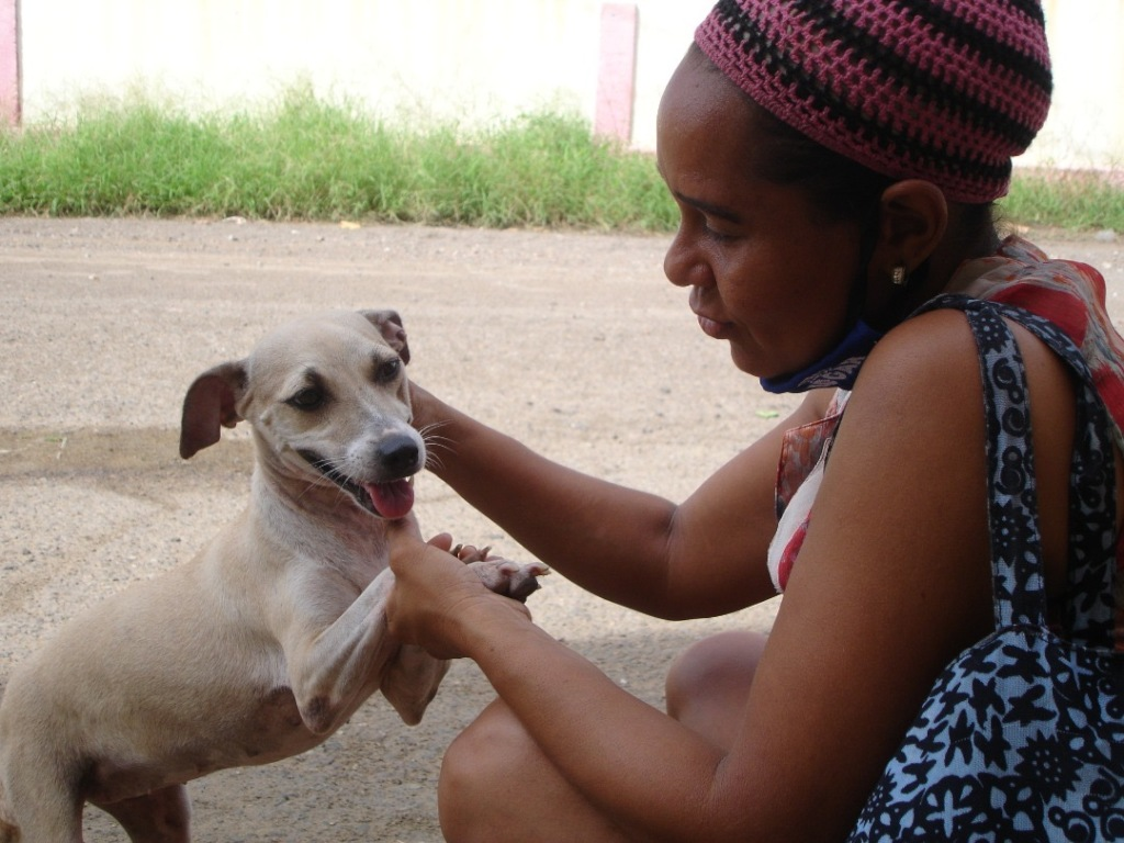 Help us stop cancerous tumours in Venezuelan dogs