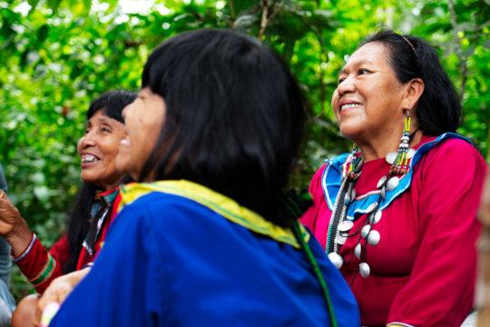 Ayahuasca is a Shipibo ancestral medicine.