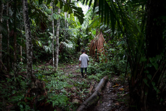 A local biologist walking in the permaculture area