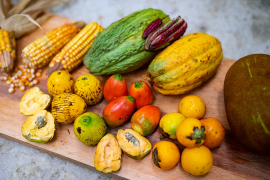 Some of the fruits we harvested in our chacra