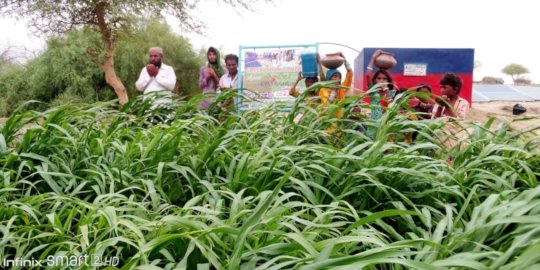 People of Thar are happy to get Green Farm