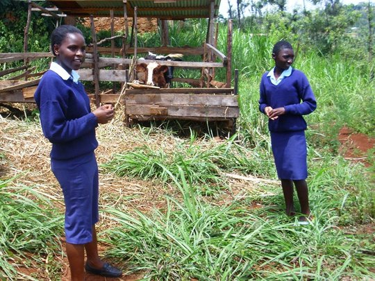 Kariti Students in the shamba