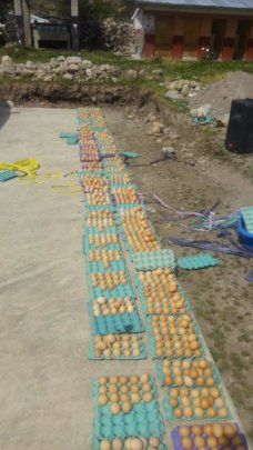 Eggs as part of the delivery bags