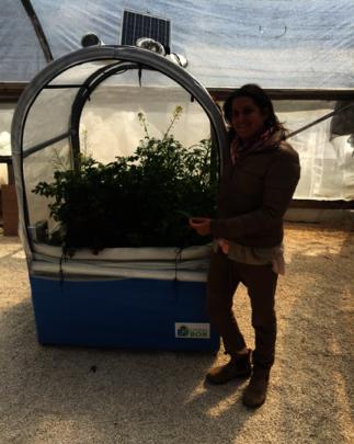 Nitzan showcases her hydroponic garden