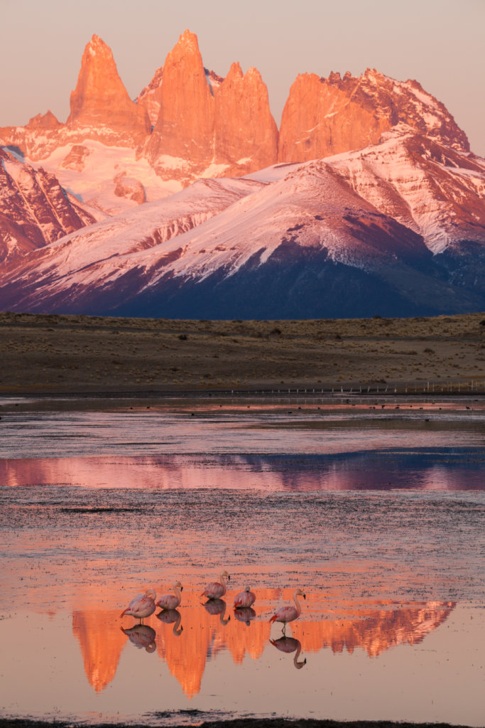Kids for Patagonia National Parks