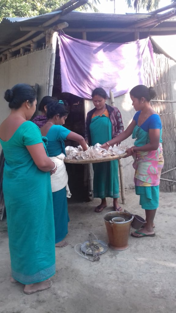 Women mushroom growers independently working