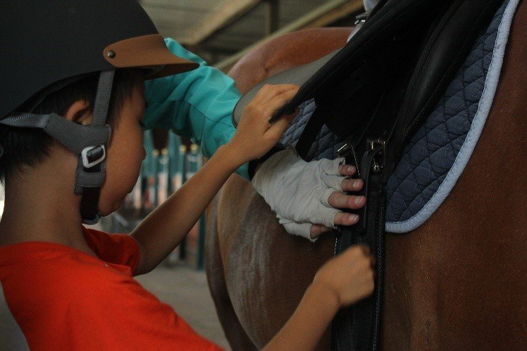 Learning how to tack up our horses!