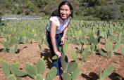 Empowering dreams in Mexico