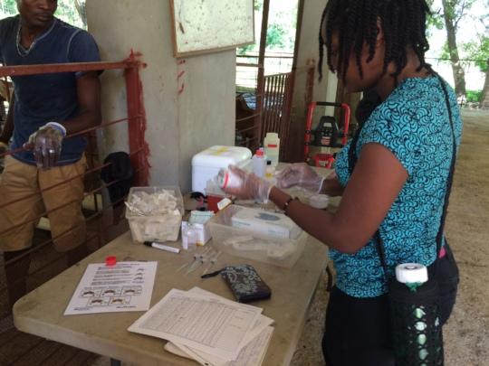 CVET student prepping pre-breeding treatments