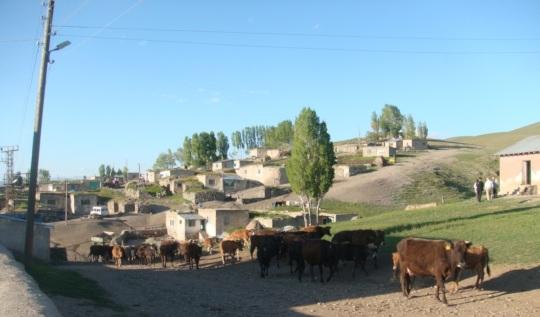 Oglakli Village
