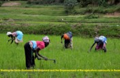 Providing Agriculture inputs for 1400 Rice Farmers