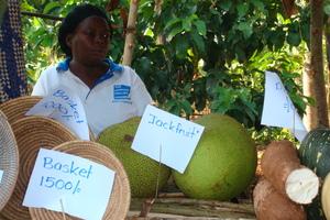 Microfinance Partner Group Selling Produce
