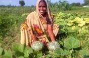 Support Organic Kitchen Garden and Gift Nutrition