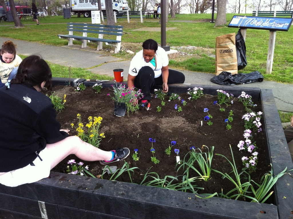 Garden Raising