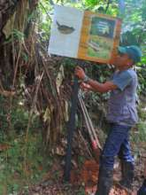 Jose Perez, Chestnut-capped Piha Bird Reserve