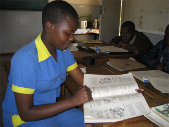 School Fees for 40 Young Girls in Zimbabwe