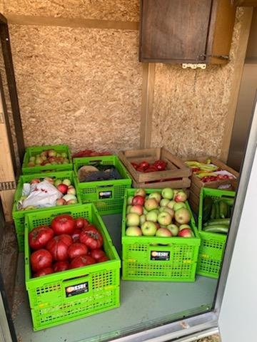 Look at this delicious produce!