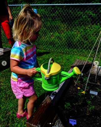 Watering the garden at Blooming View Montessori
