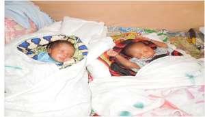 Adeline's healthy baby boys.