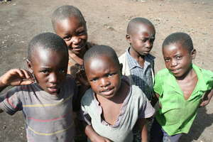 Congolese Boys