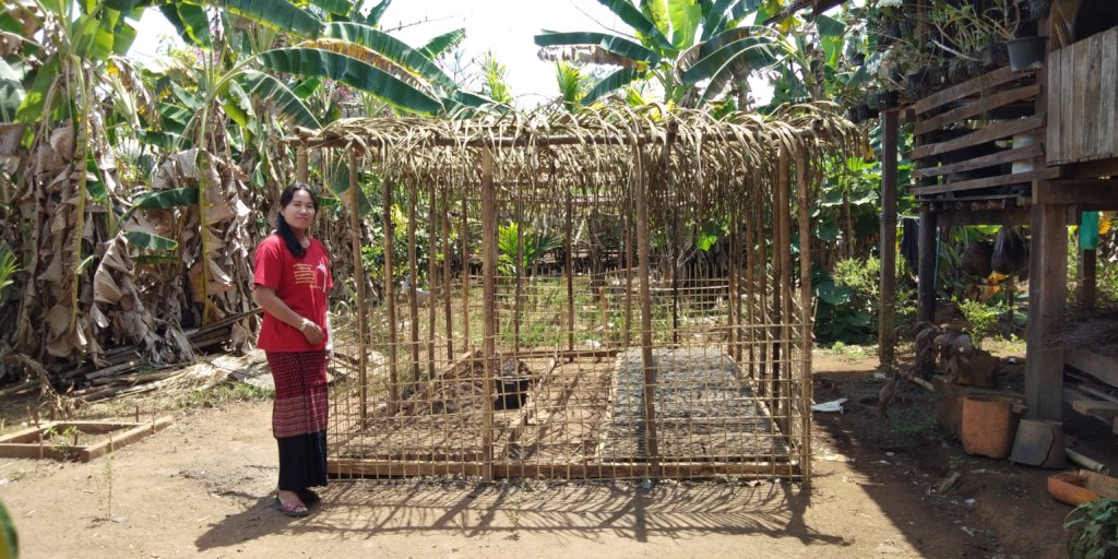 Help People in Myanmar Protect Vulnerable Forests