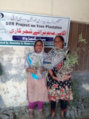 Tree Plantation in the target areas