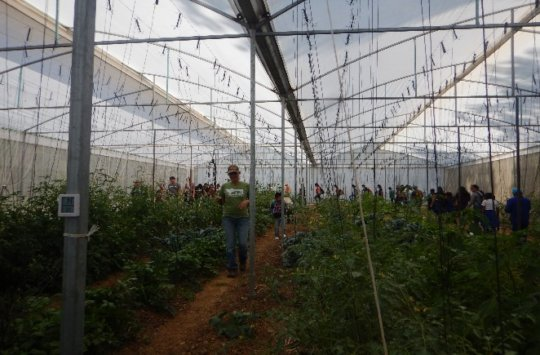 Vegetable Production Without Chemicals Session