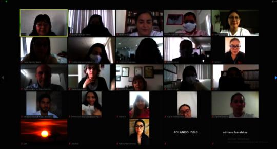 Virtual meetings- student participants