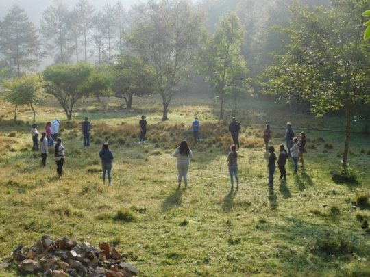 Forest walk and activity for youth