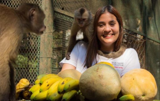 SAI volunteer sorts out food for Capuchin monkey.