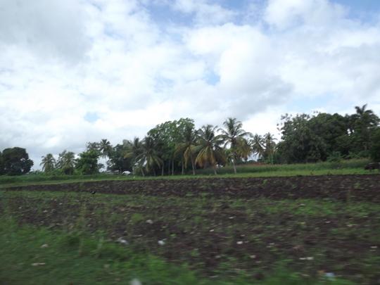 A freshly plowed field