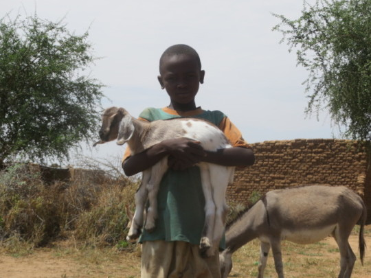 A goat to change a life