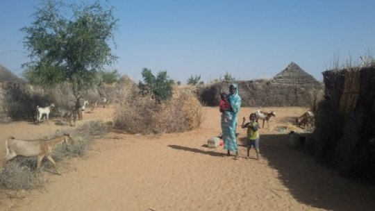 Fatinya on her land with her goats