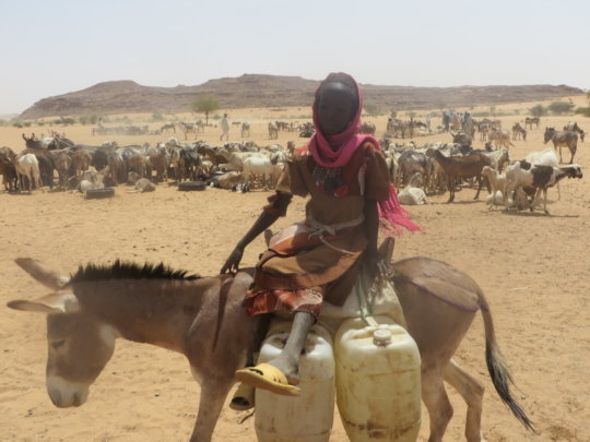 Girl fetching water with her donkey