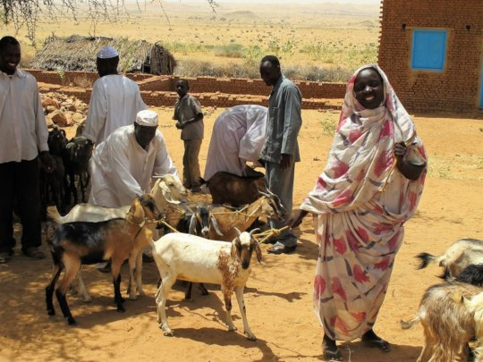 Goats bringing smiles to beneficiary's faces!