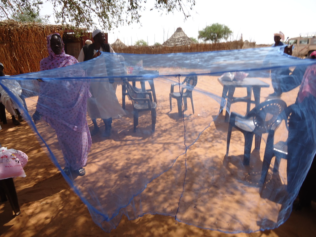 One of our large mosquito nets