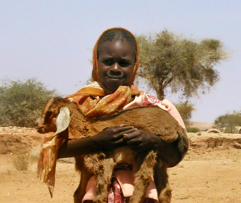 An armful of hope! Goats Milk saves lives.